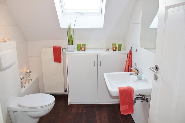 魔法の家事・トイレ掃除で心がスッキリし幸せになれる?